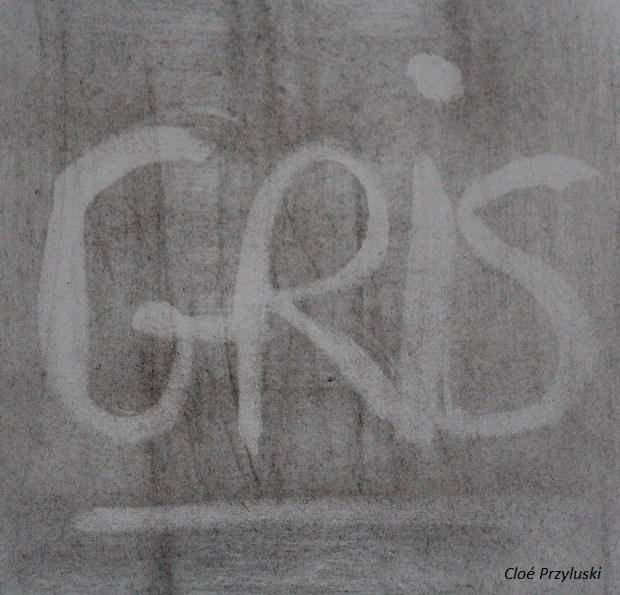 230318_il tient bon le gris_IMG_5186